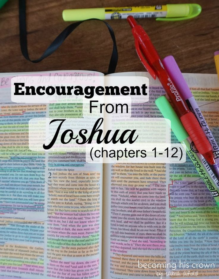 Joshua Quiz on Chapters 1 - 8 - Doing Good