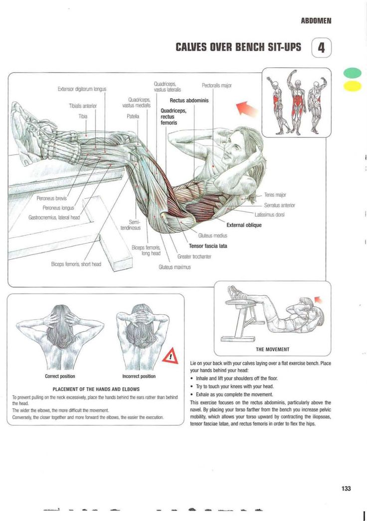 Strength training anatomy  4. Calves over bench sit-ups  Abs, core, six pack, flat stomach, no more muffin top, summer body, bikini exercises