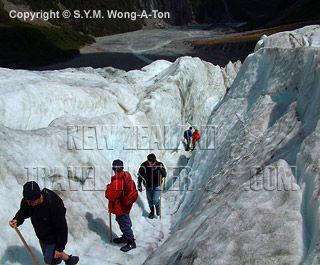 Newzealand alone - Picture of glacier walk at Fox Glacier, West Coast, New Zealand