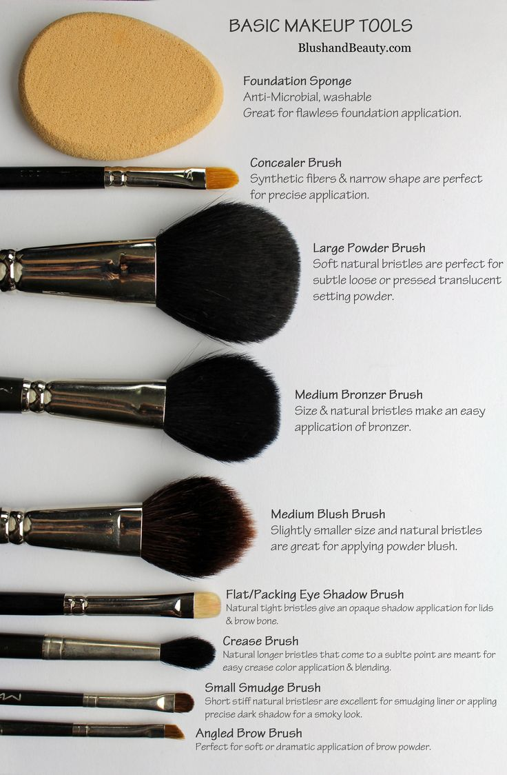 Basic Makeup Essentials For Teens: Basic Makeup Brushes / Pincéis Básicos De Maquiagem
