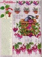 Gallery.ru / Фото #49 - Ботаника-цветы - irislena