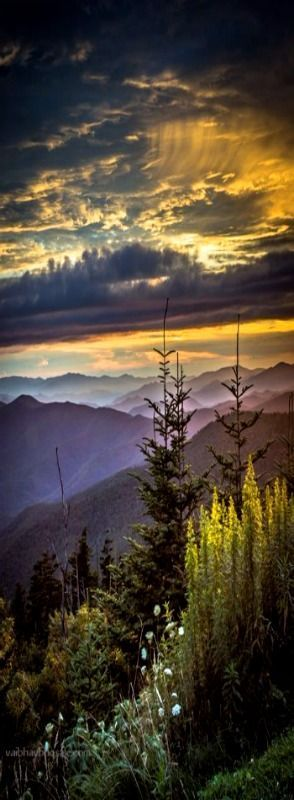 Clingman's Dome, Great Smoky Mountains National Park, Tennessee