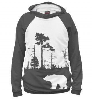 Силуэт медведя на фоне дикого леса