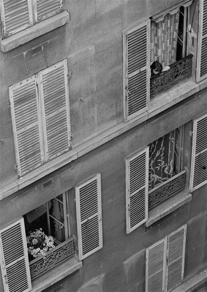 293 best images about andre kertesz on pinterest for Fenetre bourcier