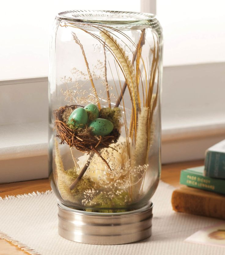 A @Robin Hawk® Canning jar turned upside down makes a great terranium!