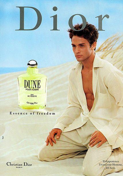 Dune Pour Homme Dior    Notas de cabeça: cassis, folha de figo, manjericão e sálvia.    Notas de coração: fig madeira, casca e resedá rosa.    Notas de fundo: sândalo, tonka bean, baunilha e cedro.