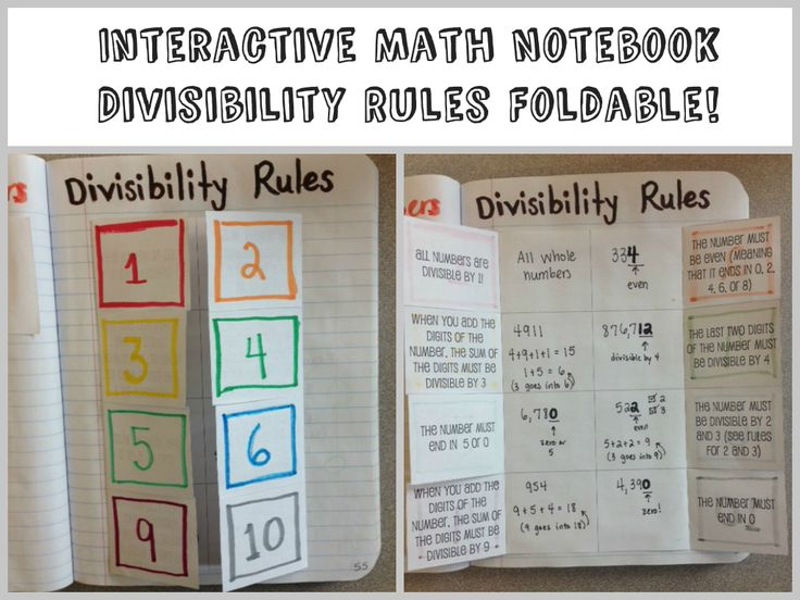Divisibility Rules foldable for math interactive notebook