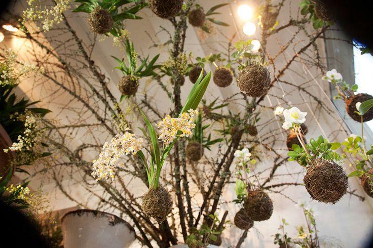 Дерево коконов с цветами String Gardens
