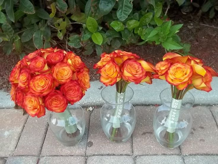 Ilana and Her Girls: Orange Circus rose bouquets *Bridal bouquet will be red roses, bridesmaids' bouquets will be white roses with white carnations.