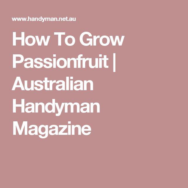 How To Grow Passionfruit | Australian Handyman Magazine