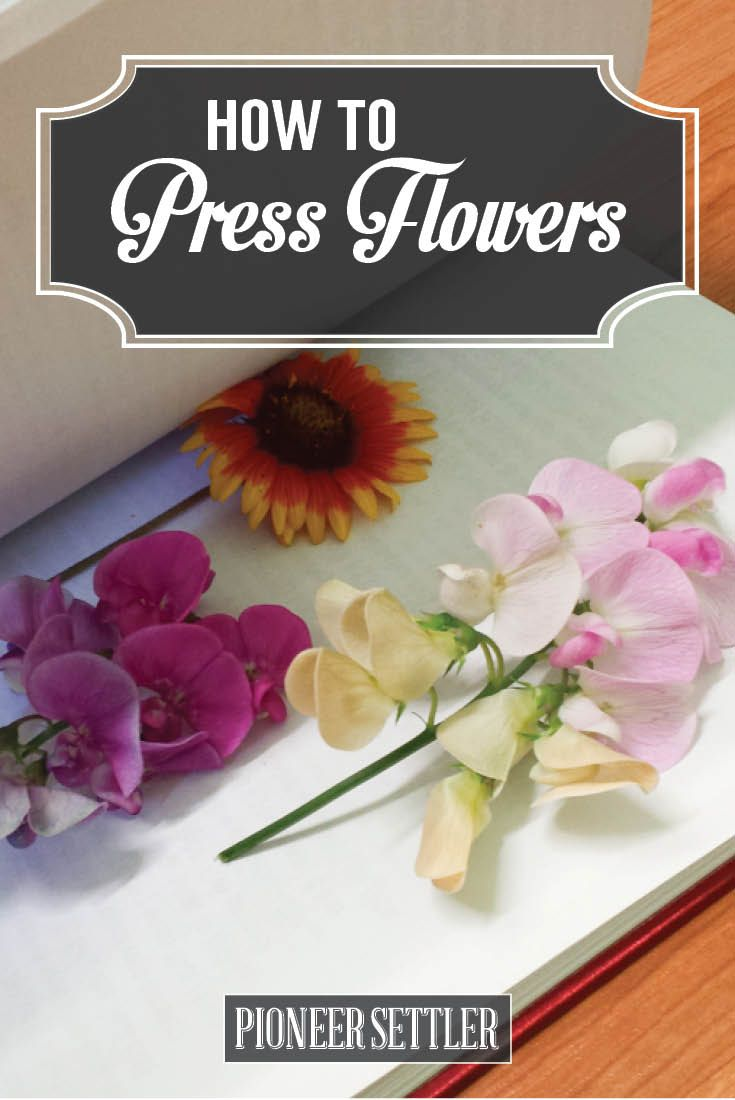 How to Press Flowers – Different Methods for Perfect Dried Petals Every Time | DIY Craft Tutorials - How To Preserve Flowers | http://pioneersettler.com/how-to-press-flowers-diy/