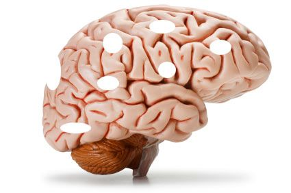 These foods HARM your brain - beware