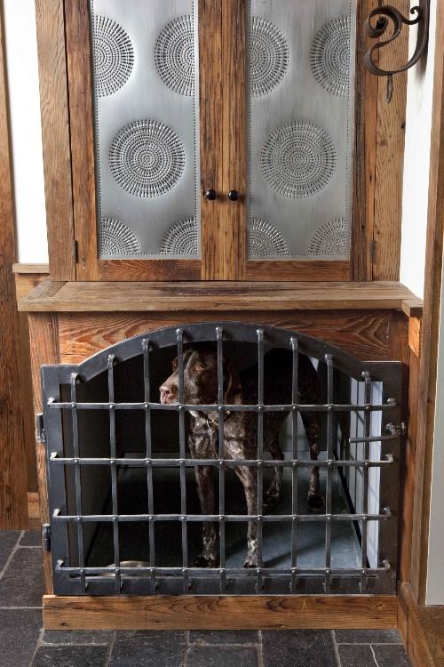 Best 25 Dog Cages Ideas On Pinterest Dog Crate Dog