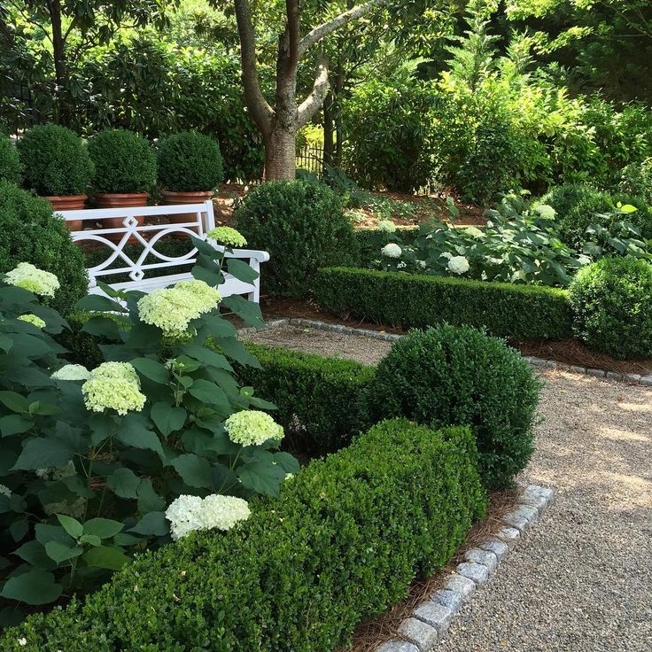 Garden nook: Annabelle Hydrangeas edged with boxwood, coblestone, pea gravel, bench, potted boxwood - Elizabeth Elsey
