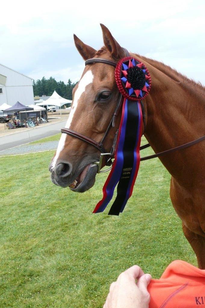 Arbutus Meadows Champion