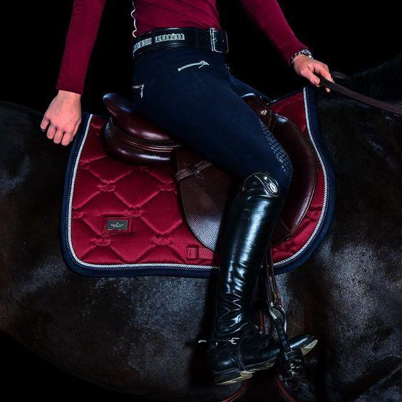 Burgundy dreams... #equestrian#equestrianstockholm#horse#equestrianperformance