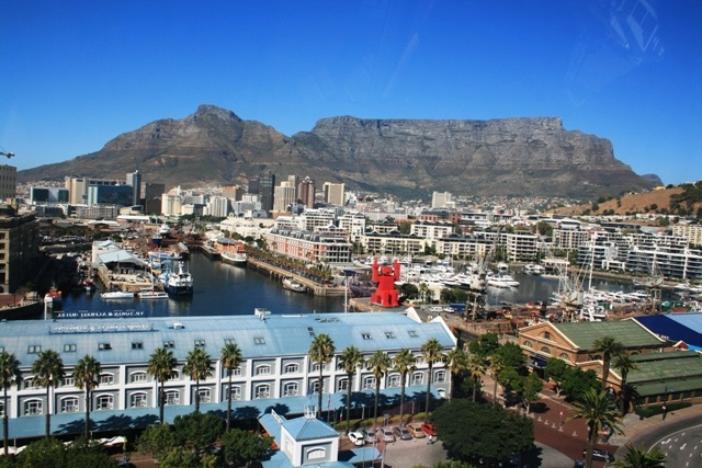5 Must Do Tours when in Cape Town