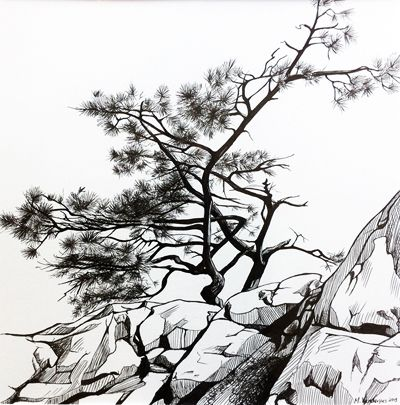 Lone Pine, pen and ink, 1ft x 1ft
