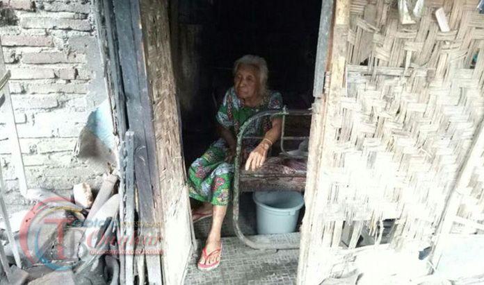 Hidup 20 Tahun di Gubuk Sebelah Kandang Ayam, Wanita Renta Sungguh Memprihatinkan