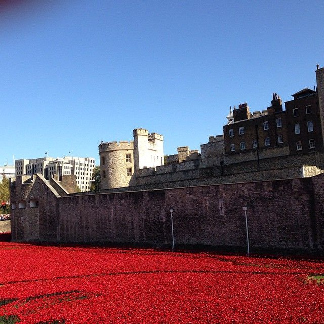 Sea of Red #toweroflondon #poppyfields #inspiration #nofilter #london #goodweather #tribute