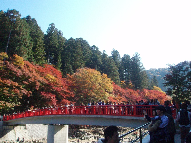 【Aichi】Koran-Valley,famous for its beautiful autumn leaves