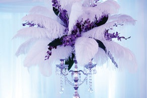 Feathers and Flowers by Floral Elements