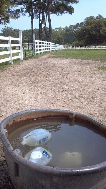 Jugs in the Water Trough  Freeze gallon jugs of water to help keep your trough cool in the summer. Alternatively you can use hot water to help prevent freezing in the winter. Horses seem to love playing with them too.