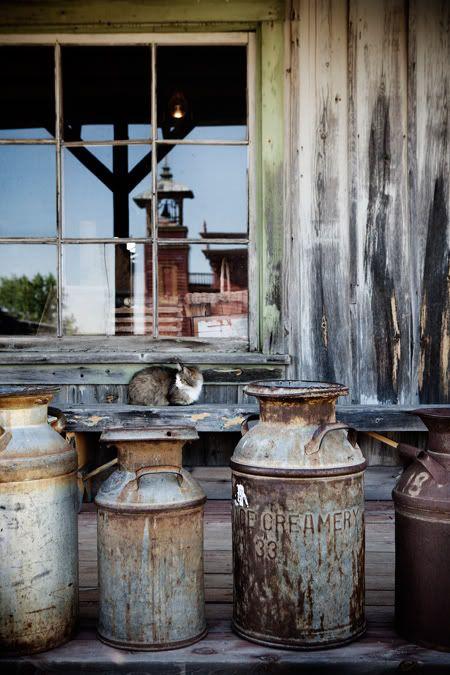 antique milk cans