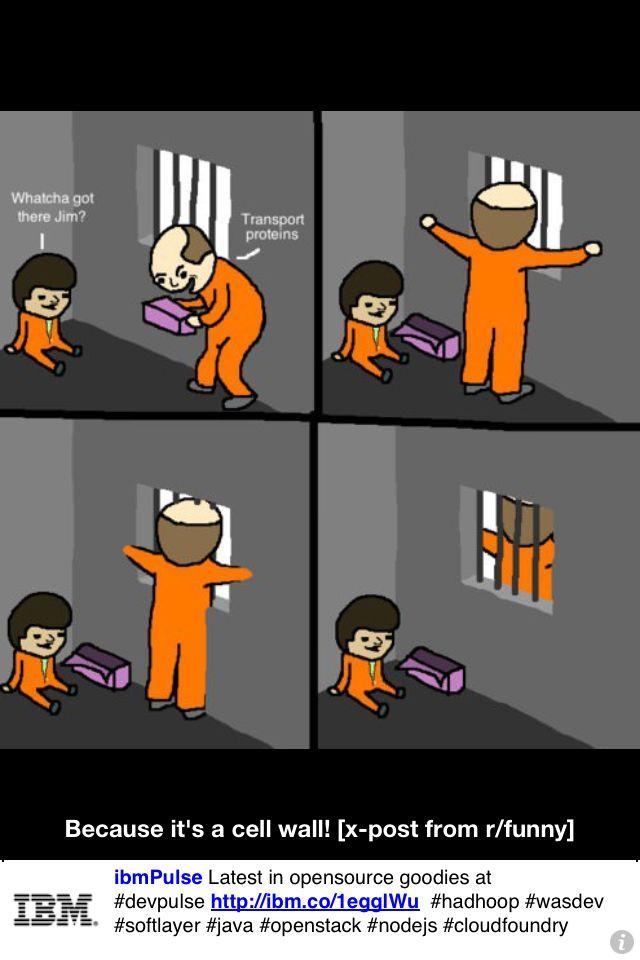https://i.pinimg.com/736x/0a/49/15/0a49153b84bdfa54748e96820e02860b--nerd-jokes-nerd-humor.jpg