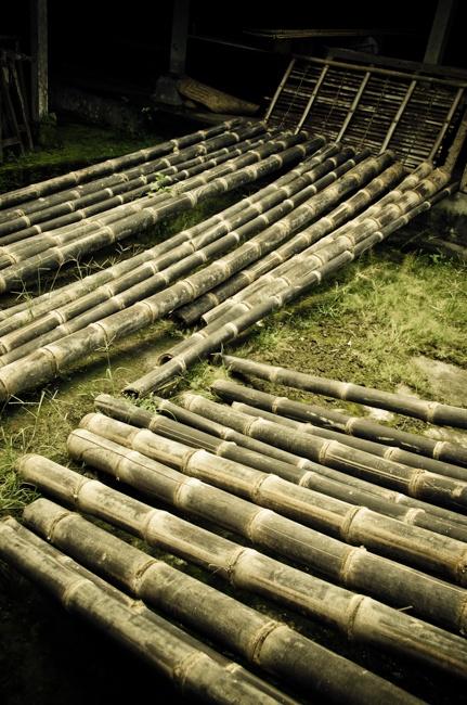 Bali_5_11_250.jpg