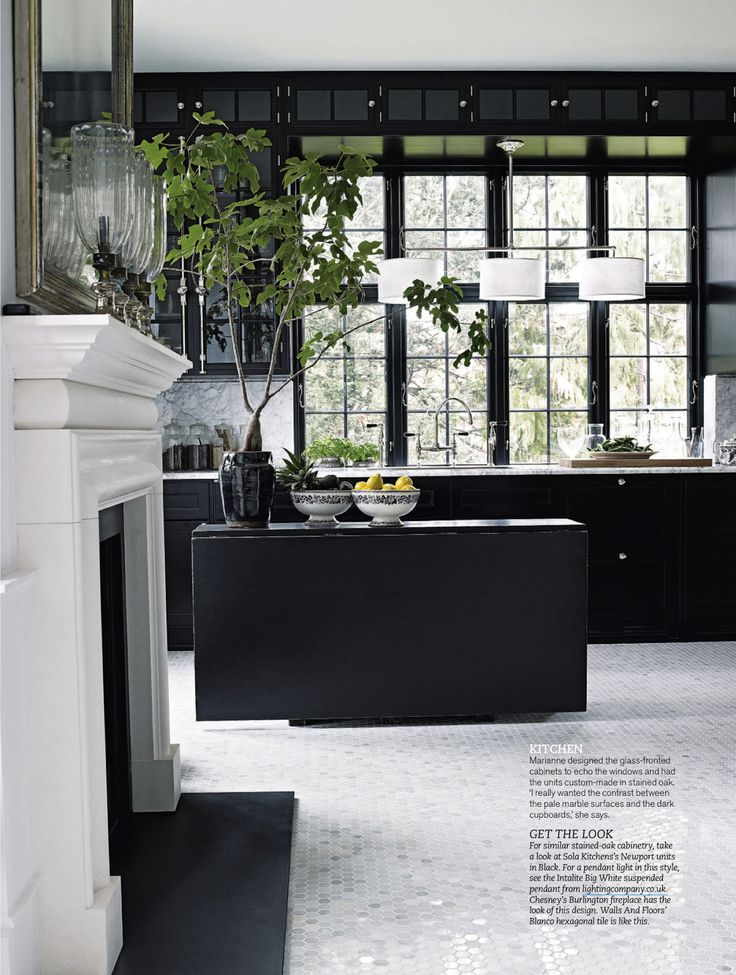 Love how this big plant is working in this kitchen.