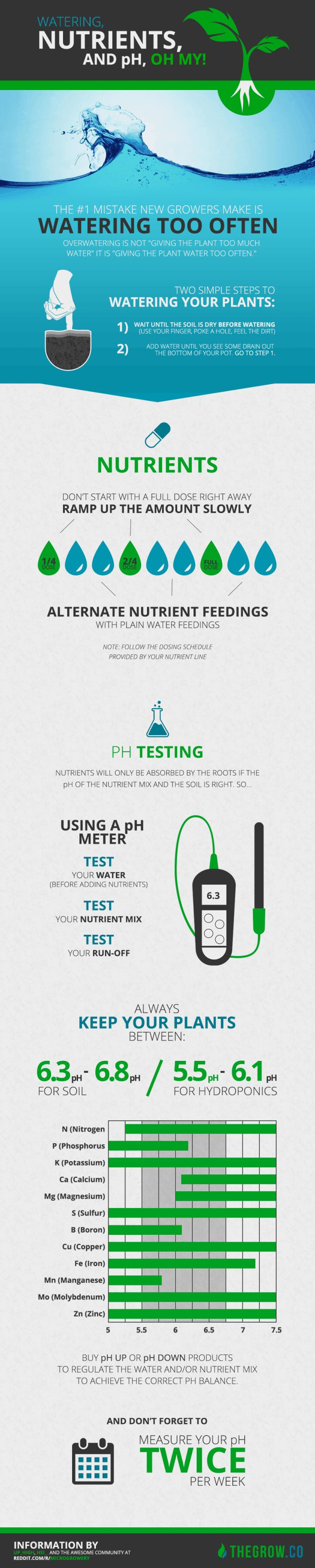 Infographic on Watering, Nutrients and pH