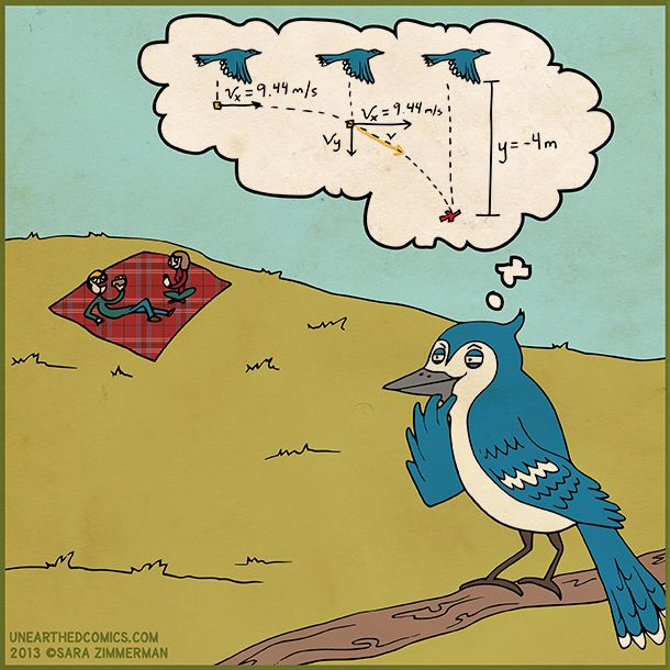 Science cartoon about bird planning how they poop on humans. #projectiles