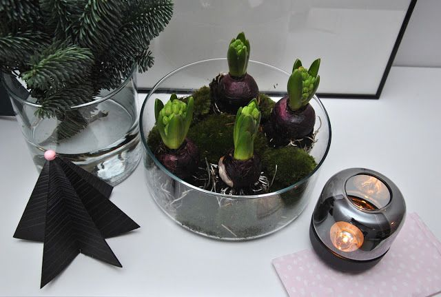 advent decoration , DIY project