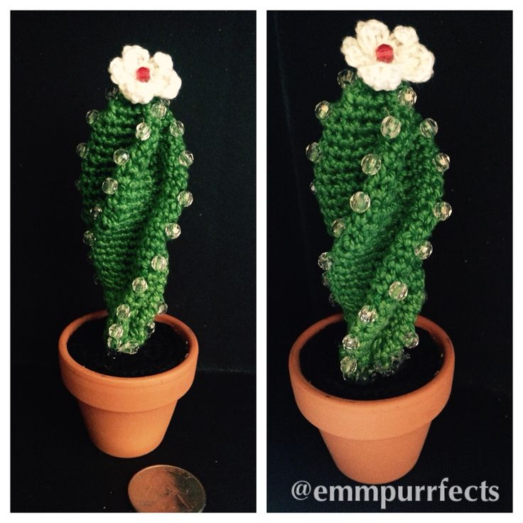 Amigurumi cactus with beads and flower I made for my mother in law.