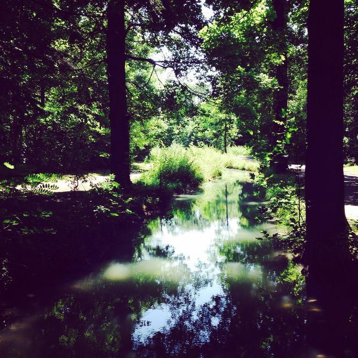 Bois de Boulogne.