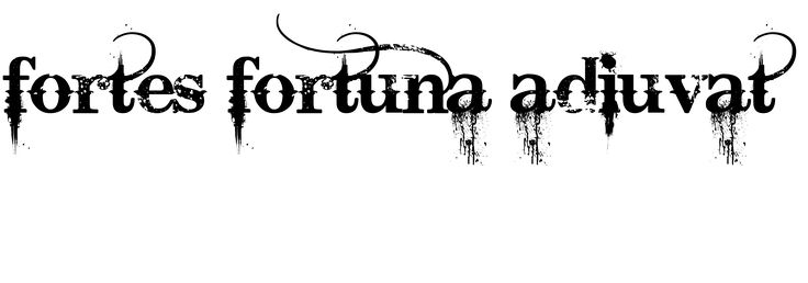"""I'm think of getting a tattoo that says """"Fortes Fortuna Adiuvat ..."""