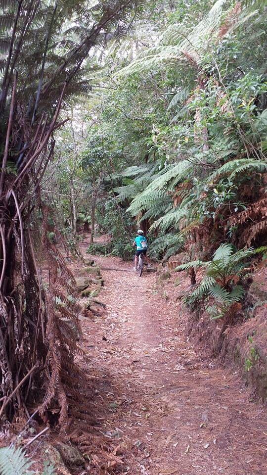 Whakamaru to Atiamuri ride
