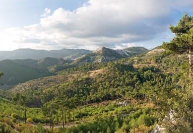 http://www.lesvosgreece.gr