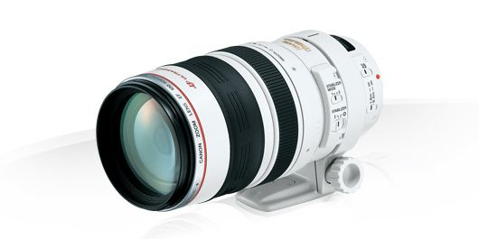 Review of the Canon EF 100-400mm f/4.5-5.6L IS USM Lens