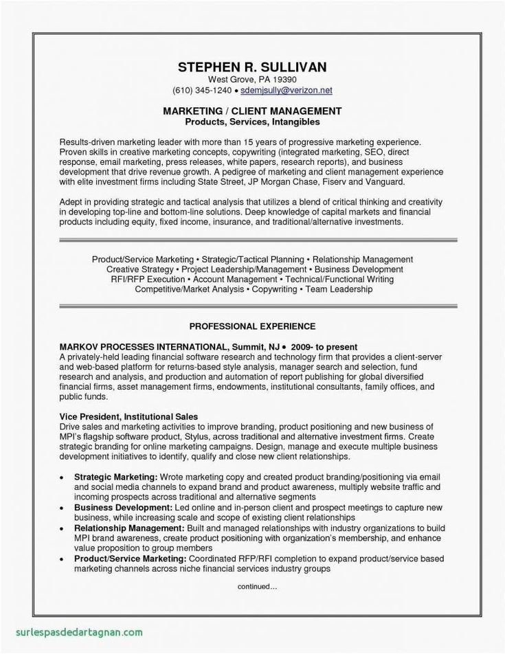 Google Drive Resume Builder Comfortable Monster Resume