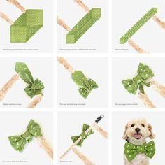 DIY No Sew Dog Bow Tie   Vanillapup