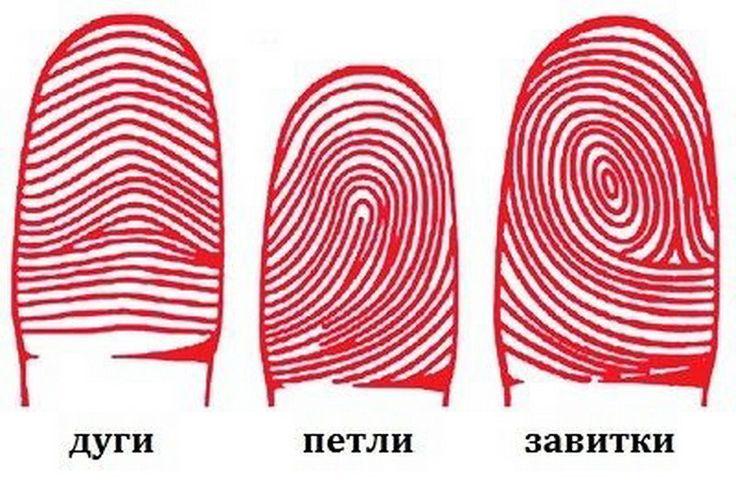 ДАКТИЛОСКОПИЯ И ХАРАКТЕР. ЧТО ПОВЕДАЮТ ВАШИ ПАЛЬЧИКИ? Следующий тест основан не на уникальности рисунка на наших пальцах, а на 3 типичных видах линий, которые можно при хорошем освещении увидеть на подушечках наших пальцев. Присмотритесь. Что вы видите:…