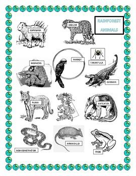 Celebrate Earth Day in your Classroom..This activity was designed to have students in Pre K -2 creating their own headbands. Using Pre cut Phrase strips have students color and attach all the Rainforest Animals and create a beautiful Rainforest headpiece.