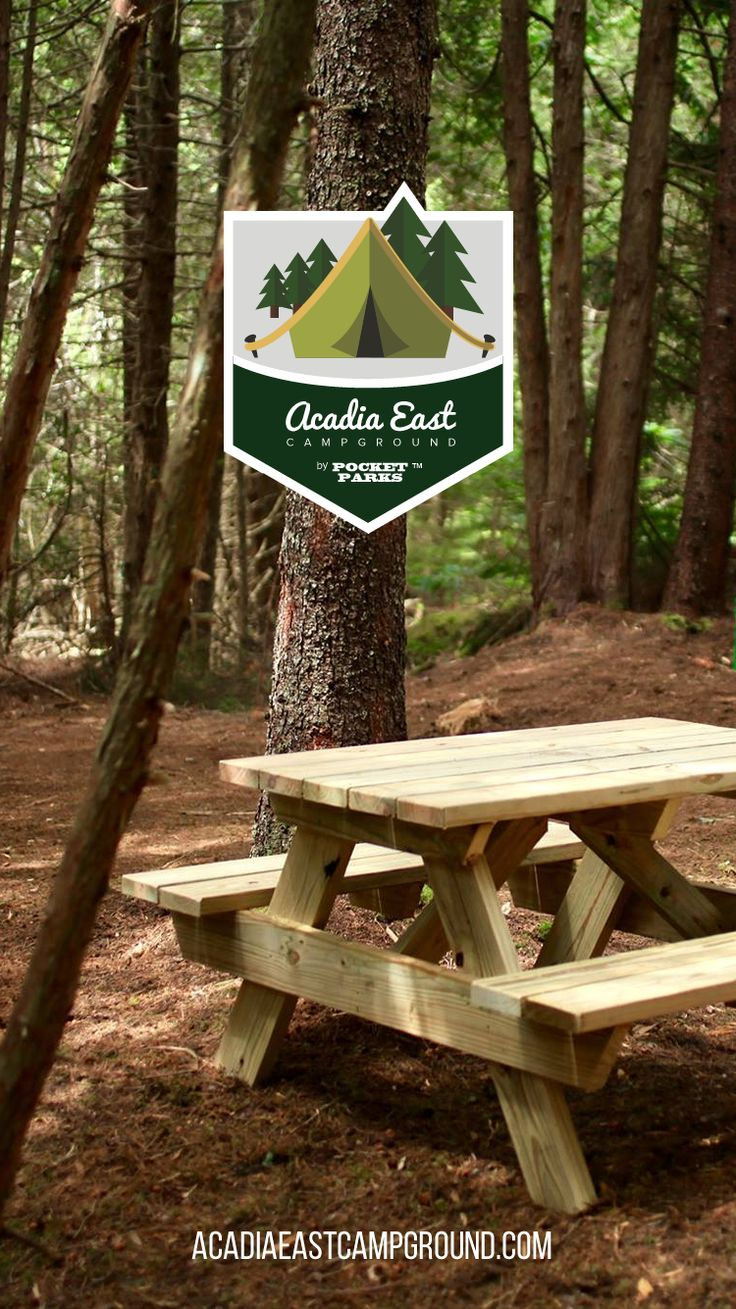 Acadia east campground tent camping near acadia national