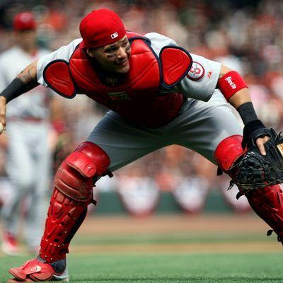 St. Louis Cardinals Yadier Molina