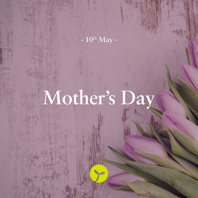Many Australians celebrate Mother's Day on 10 May 2015 by showing their appreciation for the achievements and efforts of mothers and mother figures.  #mothersday #mum #mother  #holiday #holidays #sprout #freedomtogrow