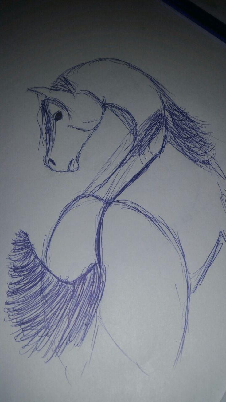 This is an arabian horse I drew! I think it looks good but I sorta messed up lol. I did use a blue pen btw.