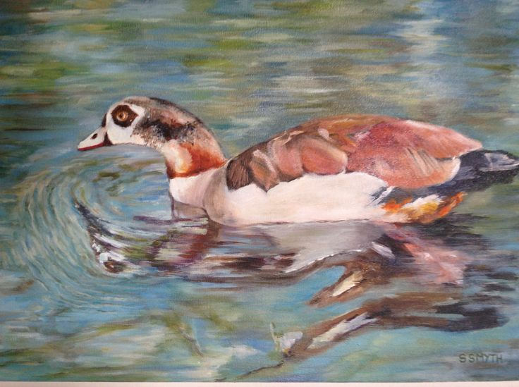 Egyptian Goose    oil on canvas