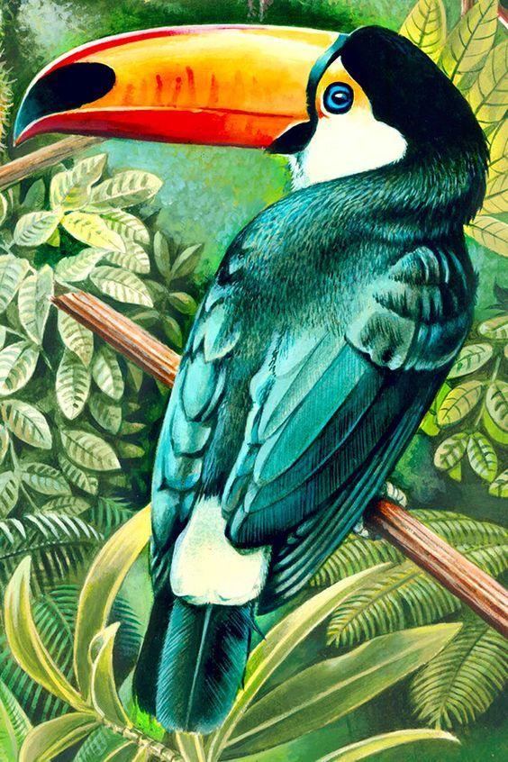 тропическая птица рисунок устанавливаются столб